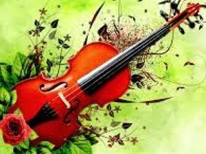 doğum günü kutlama ev partileri kemancı evlenme teklifi sürprizlerine müzisyen  istanbul