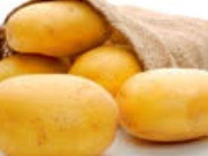 Satılık natascha patates