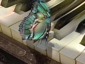 piyanist ve karşılama orkestrası fiyatları istanbul