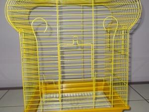 taç muhabbet kuşu kafesi sarı