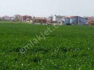 Arsa Havaalanına yakın Mimarsinan Silivri Mah.