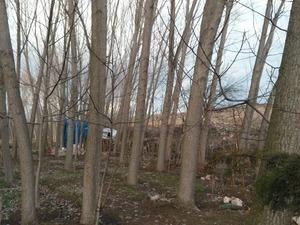 Yeniyörük Köyü Alışverış ilanı