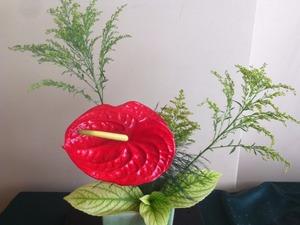İkebana,Japon Çiçek Düzenleme Sanatı workshop (2saat )