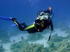 sanayi dalgıç deniz altı kaynak işi arıyorum