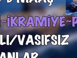ULUSLARARASI GEMİLERE VASIFLI/VASIFSIZ ELEMANLAR