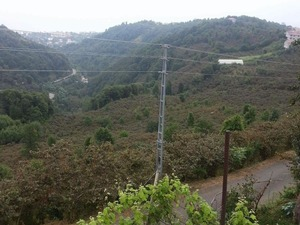 Satilık arsa Aksaklı Köyü fiyatları