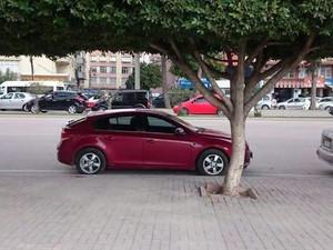 2011 model Chevrolet Cruze 1.6 LT