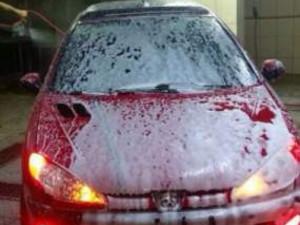 Diyarbakır Yenişehir Şehitlik Mah. Peugeot 206 1.4 XT