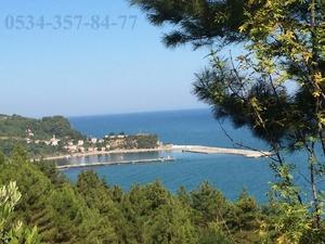 Acil Çatalzeytin Konaklı köyünde deniz manzaralı 236 m2 imarlı arsa-ilan 1 Aylıktır