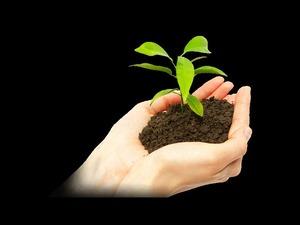 Organik Gübre Satış Bayiligi