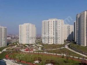 Türkoba Mah. arsa 260 m²