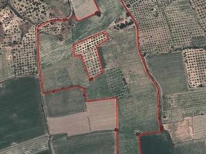 Satilık arsa Dereköy Köyü 5500000 TL