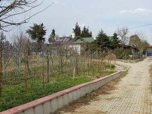 Arıtma arsalar Ballıca Köyü