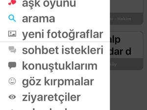 EV ARKADAŞI (bayan)
