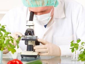 ucretsız gıda mühendisliği diploması
